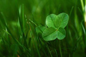 Glück, Glück finden, Glück suchen, Inga Bauer